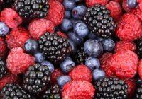 Берењето шумски плодови како бизнис