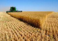 За рурален развој 33 милиони евра
