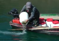 1,5 милиони евра субвенции за рибарство