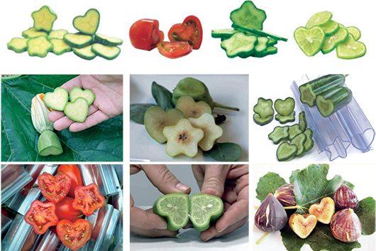 Модели за овошје и зеленчук
