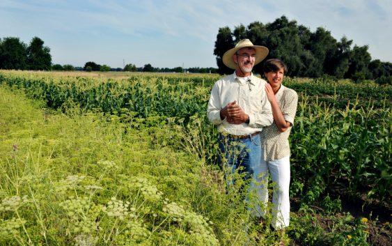 Награда за најуспешниот земјоделец за 2017 во Кочани