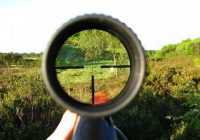 Македонија привлечна за странските ловџии