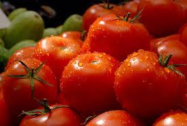 Цената на доматите и денеска е ниска, министреството ја следи состојбата