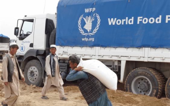 Заканите за глобалната трговија со храна