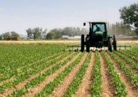 Вчерашното невреме ги уништи се земјоделски посеви во Овчеполскиот регион