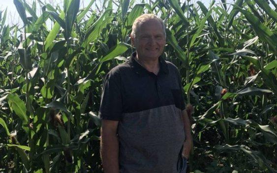 Пченката носи двојно повеќе ќар од пченицата, препорачува земјоделецот  Јосиф Барашлиевски