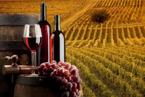 Македонија 28-ма по извоз на вино во светот, 173-та по увоз