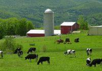 Проект за имплементација на добри земјоделски пракси