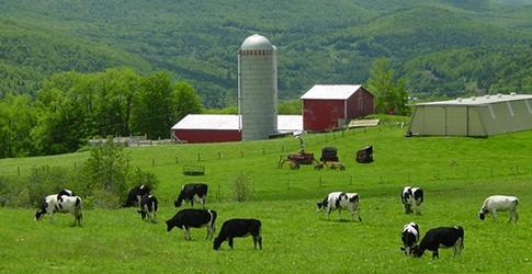 Photo of Проект за имплементација на добри земјоделски пракси
