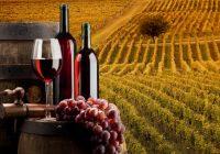 Винариите кои не го платиле ланското, годинава нема да откупуваат грозје