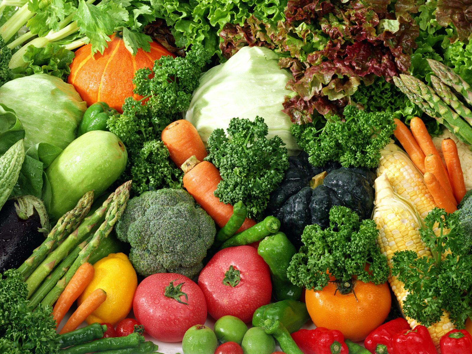 Photo of Тече рокот за пријавување за субвенции за предаден зеленчук