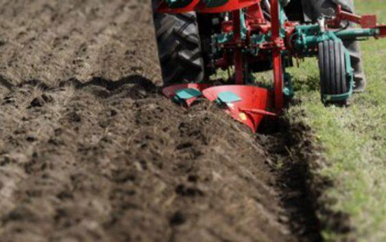 Договорот за закуп на земјиште ќе може да се продолжи и сo непосредна спогодба