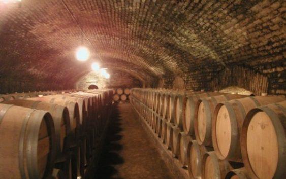 Две нови винарници во Демир Капија