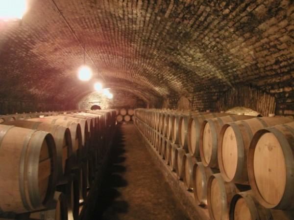 Photo of Две нови винарници во Демир Капија