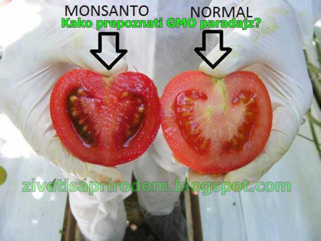 Photo of Како да препознаете генетски модифицирана храна во продавниците и на пазарите?
