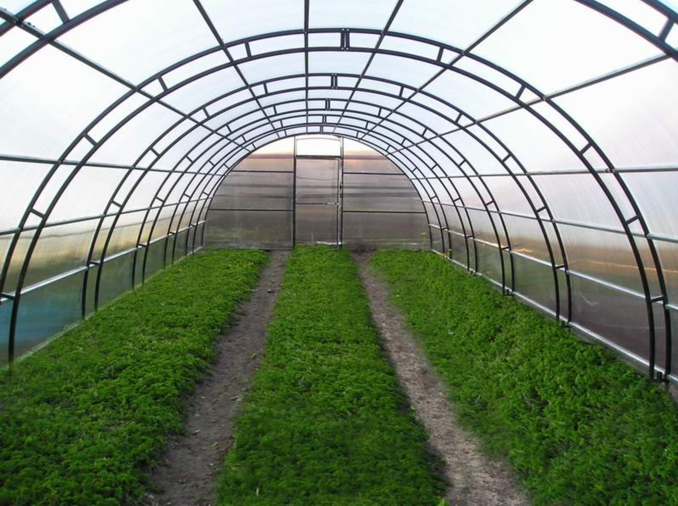 Photo of Корисниците на оранжерии ќе можат да го откупат земјиштето