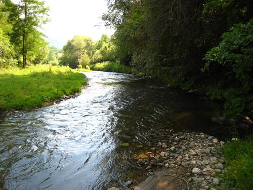 otoshnichka reka vo rankovce poribena so krap