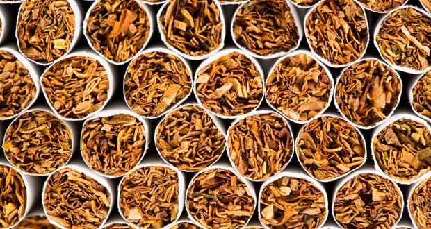 Photo of Почна исплатата на тутунот – просечната цена е 178 денари