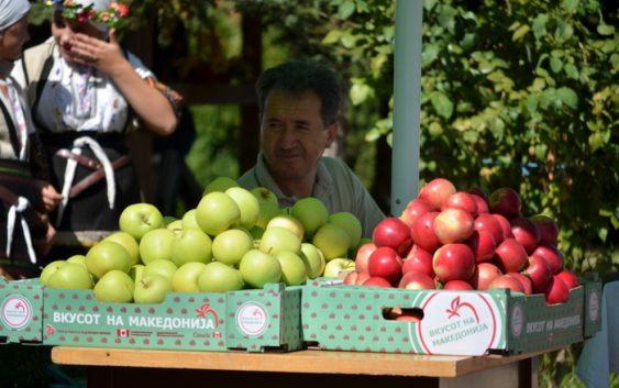 Половина од родот на јаболката извезен во странство