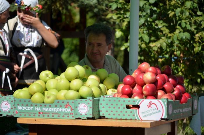 Photo of Половина од родот на јаболката извезен во странство