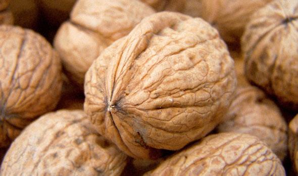 Photo of Се продаваат ореви