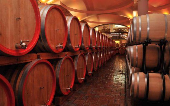 Со сопствен бренд винариите може да најдат место на странските пазари