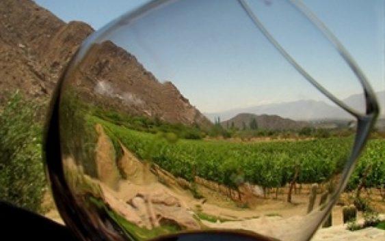 Во Шпанија се произведува најздравото вино на светот