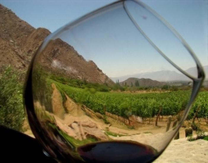 vo shpanija se proizveduva najzdravoto vino na svetot