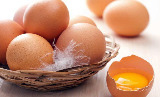 Војници на НАТО ќе јадат македонски јајца