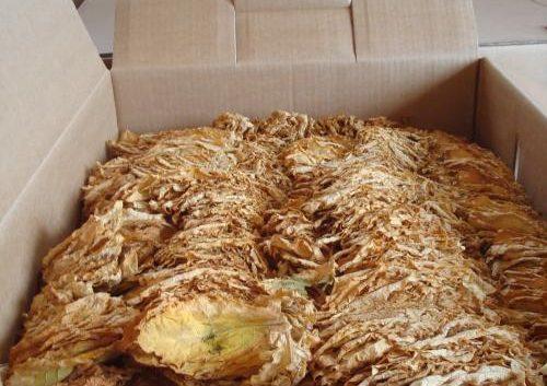 За две недели откупени над 5.000 тони тутун, просечната цена 185 денари
