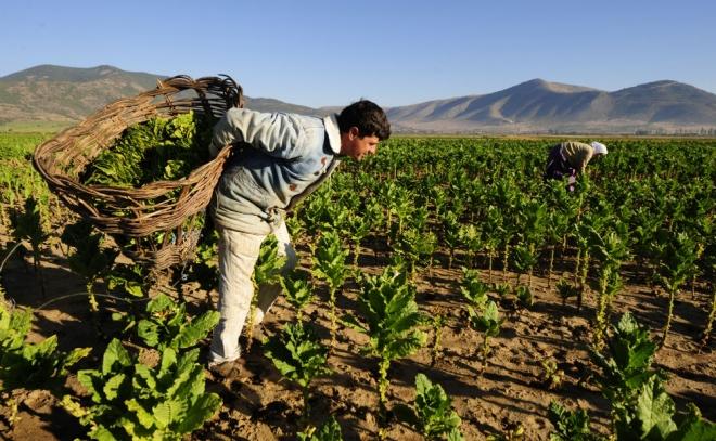 Photo of АПРЗ – Едукација на земјоделците за новата програма за рурален развој