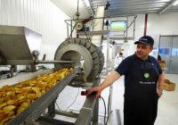 Фабриката за чипс во Кравари, одлична можност за производителите на компир