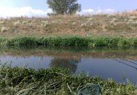 Почна издавањето на риболовни дозволи за Крива река