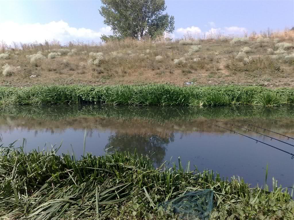 pochna izdavanjeto na ribolovni dozvoli za kriva reka