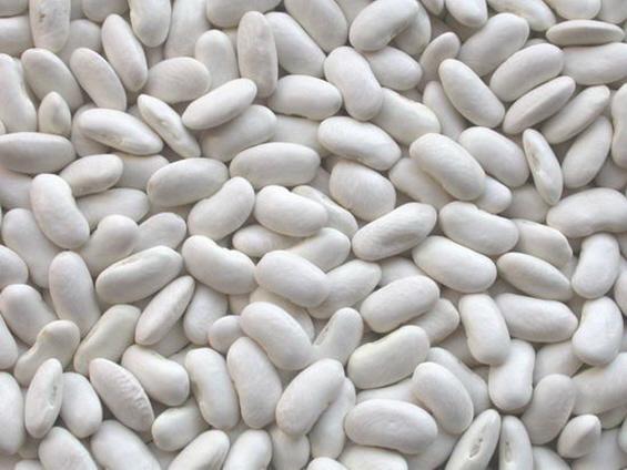 Photo of Се продава органски грав