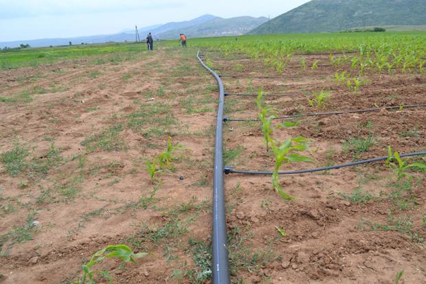 Photo of Субвенции за ефикасни системи за наводнување