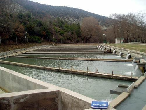 Photo of 1,5 милиони евра субвенции за рибарство годинава