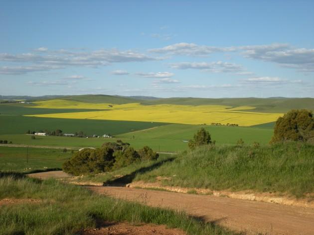 Photo of Јавен оглас 03/16 за давање во закуп на земјоделско државно земјиште до 3 хе