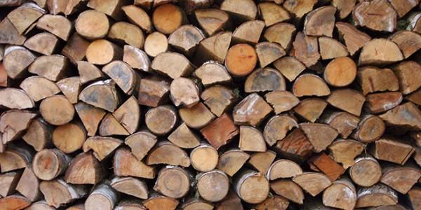 Photo of Побарувачката на дрво зголемена за 10%