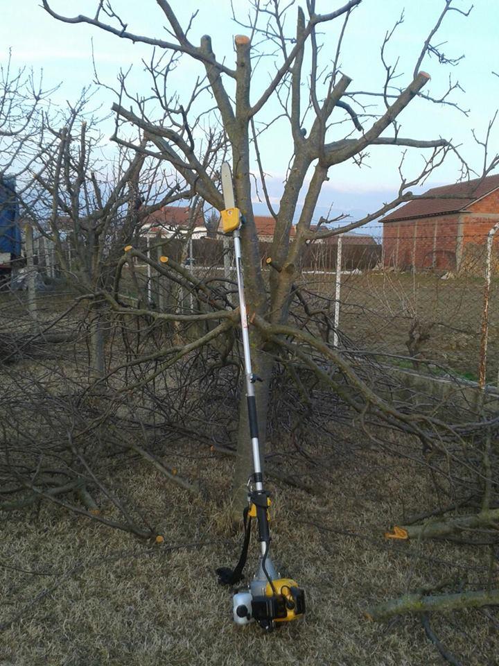Photo of Се продава пила за кроење на овошни дрвца