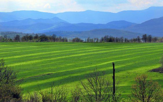 Државни ниви обработуваат 63 фирми и 75 земјоделци