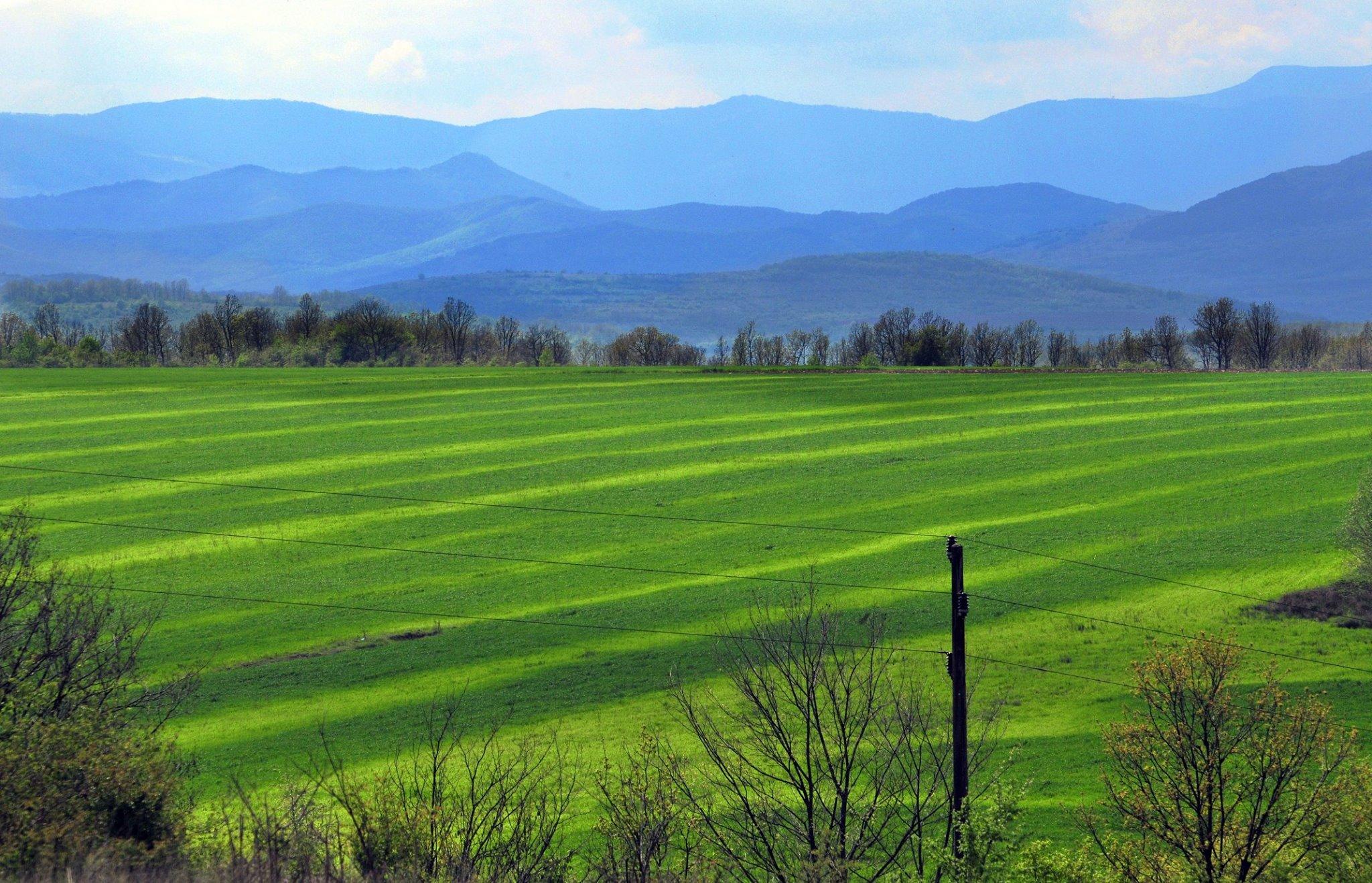 Photo of Државни ниви обработуваат 63 фирми и 75 земјоделци
