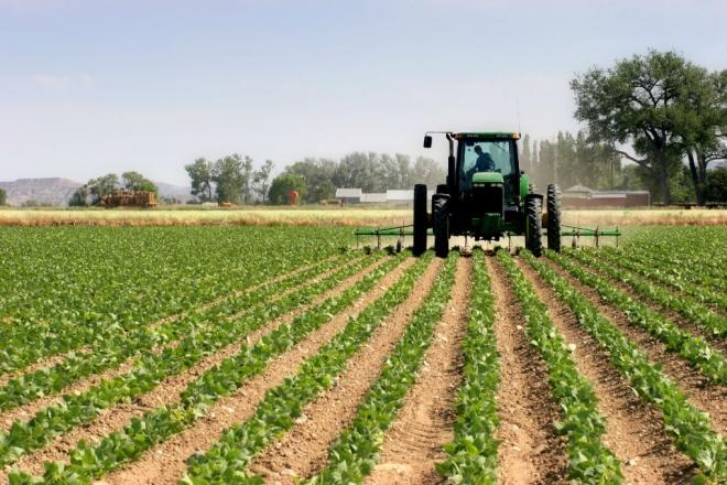 Photo of Гази Баба ќе им доделува помош на земјоделците