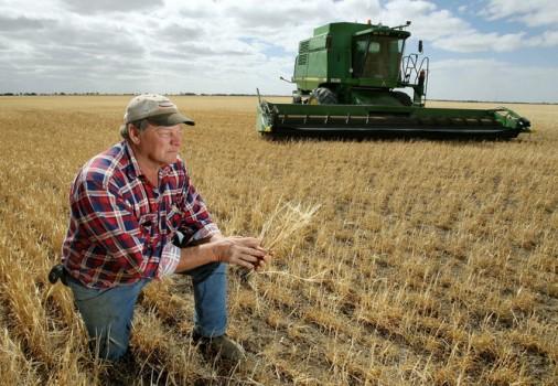 Photo of Кумановските земјоделци заинтересирани за субвенции за механизација
