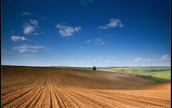 """Нема """"црна"""" листа за фармерите кои ќе пријават повеќе земја за субвенции"""