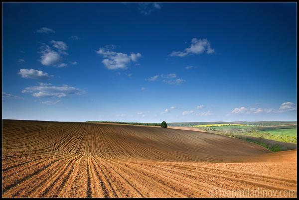 """Photo of Нема """"црна"""" листа за фармерите кои ќе пријават повеќе земја за субвенции"""