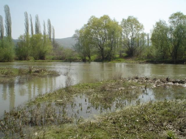 Photo of Пчиња ги повлекува со себе полињата на земјоделци во Коњари