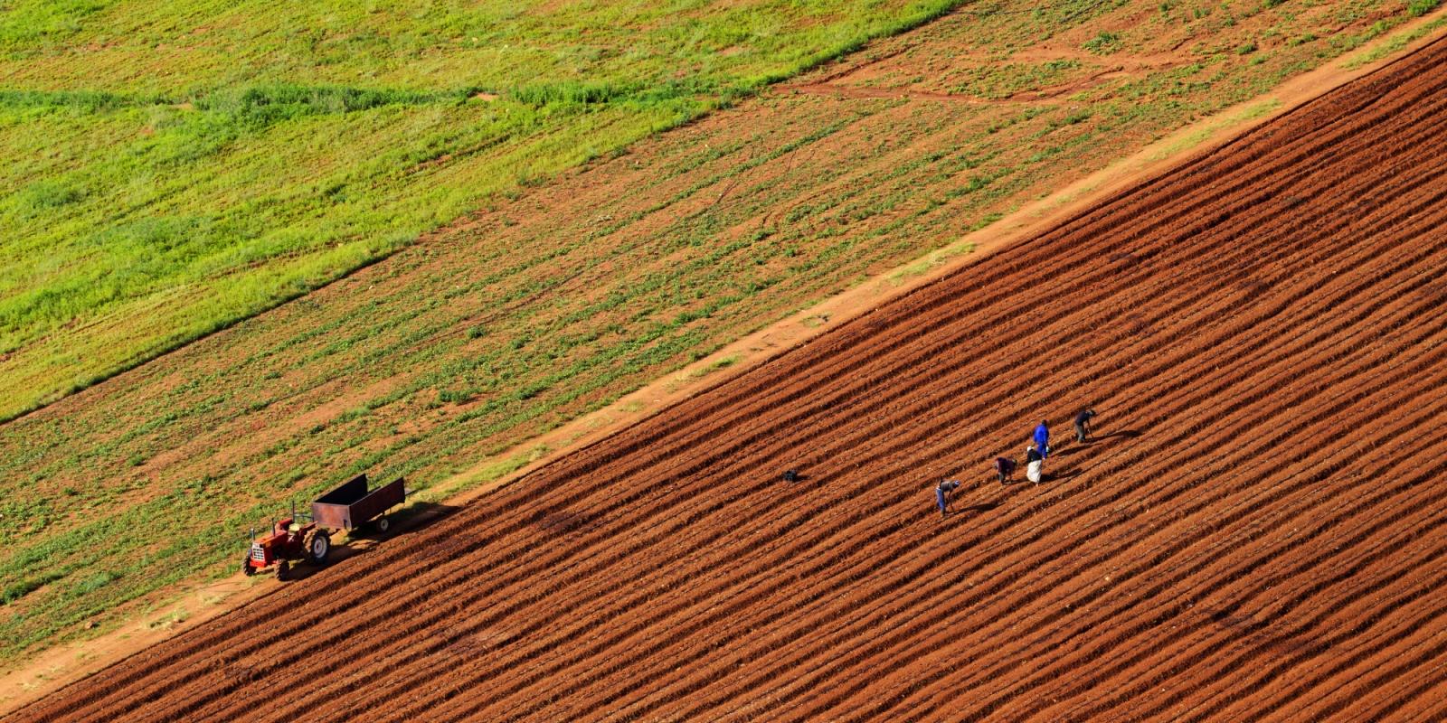 pod zakup kje se davaat ushte 7 000 hektari zemjodelsko zemjishte
