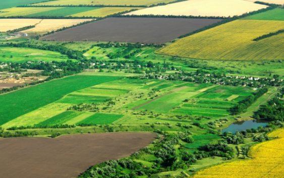 Се уште слаб интересот за осигурување на земјоделските посеви