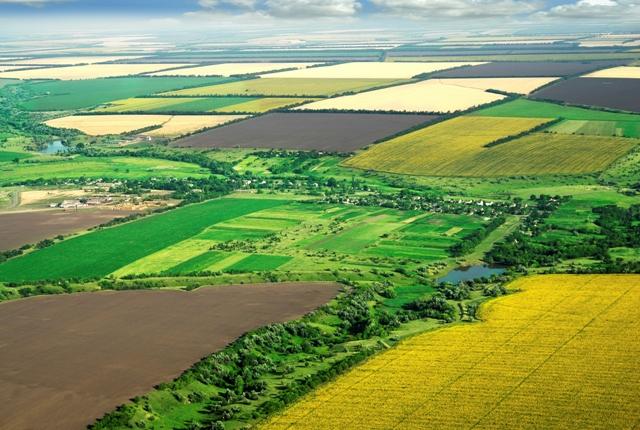 Photo of Сточарите ќе може да конкурираат за државни ниви за производство на сточна храна